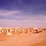 Fotos Farafra 5 - Sunt Viajes Egipto