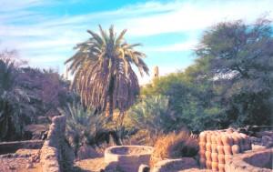 Fotos Oasis de Dakhla - Sunt Viajes Egipto
