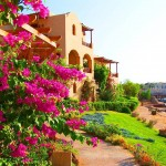 Sultan Bey Resort - El-Gouna (Mar Rojo) 10