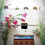 Hoteles Luxor - Nur El-Qurna Hotel 8