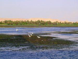Viajes en Faluca 04 - Sunt Viajes Egipto